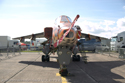 SEPECAT Jaguar at Cosford Air Show 2009