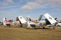 Douglas A-1 Skyraider pair in flightline walk at Duxford Flying Legends 2010