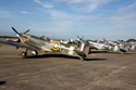 Row of Supermarine Spitfires at Duxford Flying Legends 2010