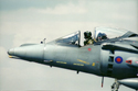 Cottesmore Harriers